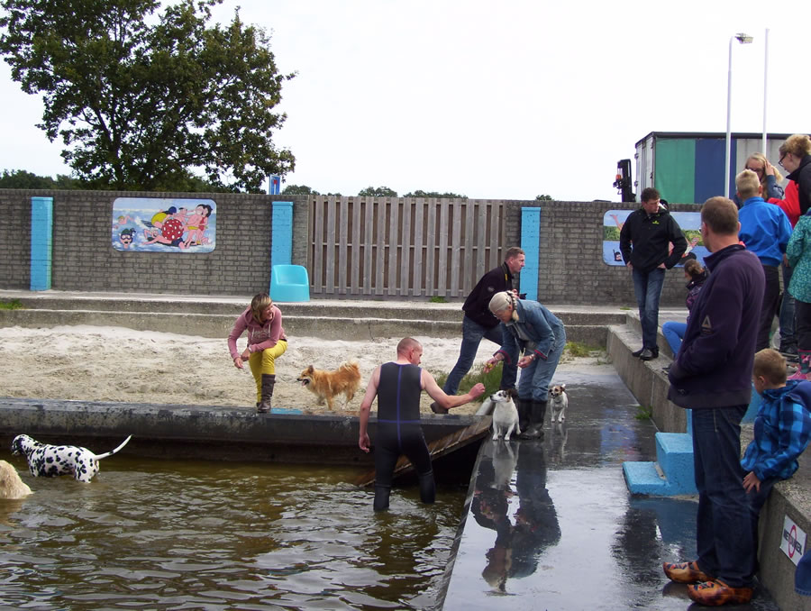 Zwembad Hemrik - Hondenzwemmen 23 sep 2012